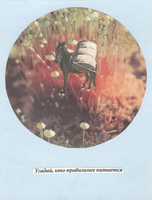 vitaly-maklakov-04