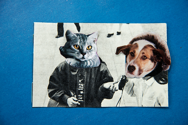 bestiary-collages-37