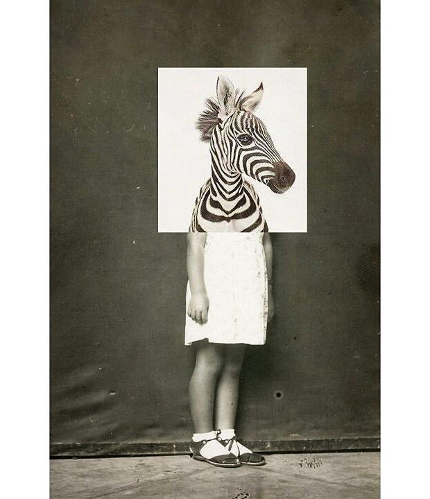 animals-collages-02